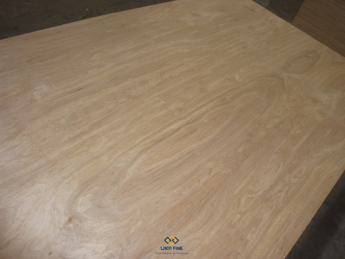 Premium Birch Faced Plywood
