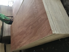 Premium Sapele Faced Plywood